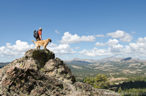 Hiker and dog in mountains