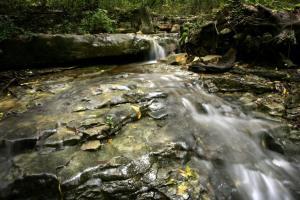 Lost River Spring