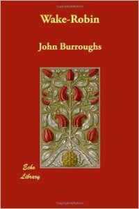 aBurroughs3