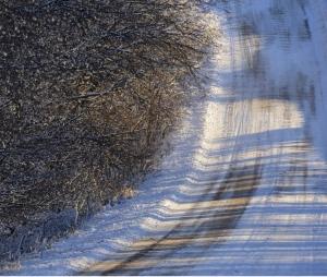 prairie, burn, TNC,  Flint Hills, Tallgrass Prairie National Preserve