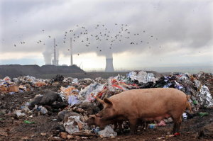TOPSHOTS-MACEDONIA-UN-CLIMATE-ENVIRONMENT-WASTE