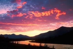 Wind River, Yukon Territory, Canada summer scenic