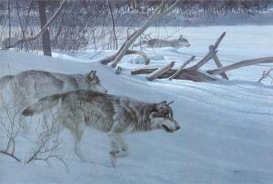 Robert Bateman_art_animals