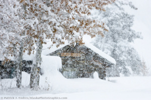 Log cabin in falling snow